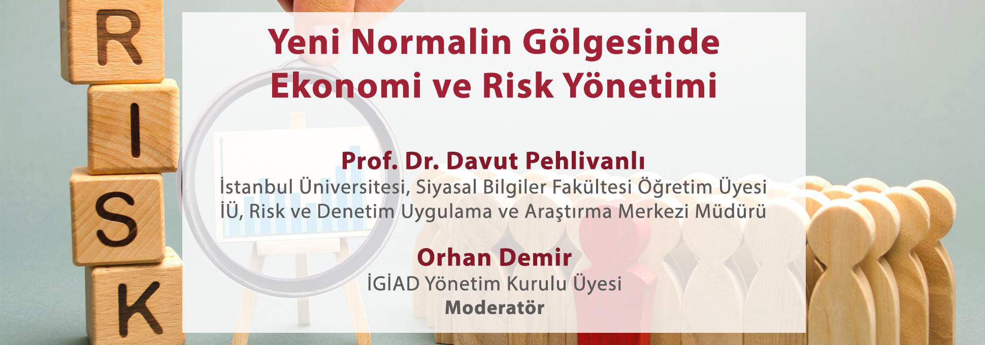 Yeni Normalin Gölgesinde Ekonomi ve Risk Yönetimi